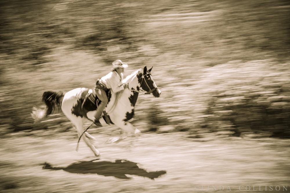 Poco Gallop