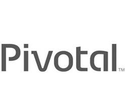 Pivotal Partner