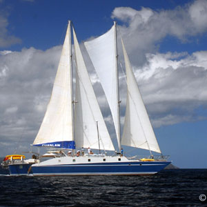 Specialty Yacht Charters: By the Cabin