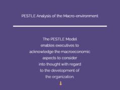 pestle-analysis-of-macro ENVIRONMENT