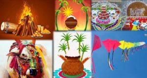 popular business stories Popular Business Stories Significance of 4 Day Sankranti Festival In Telugu States e1547445590424 300x160