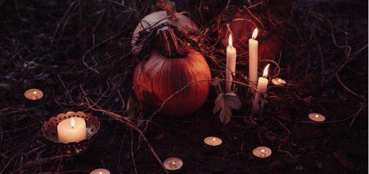 Halloween freestocks-org-155624