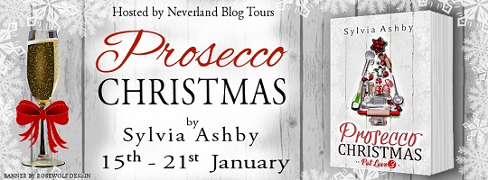 Prosecco Christmas Banner