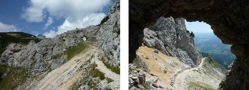 Tori-and-Tori-View Austria