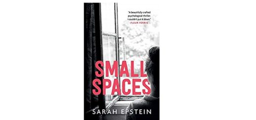 Feature Image - Small Spaces by Sarah Epstein