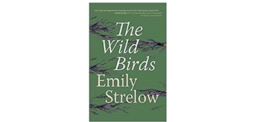 Feature Image - The Wild Birds by Emily Strelow