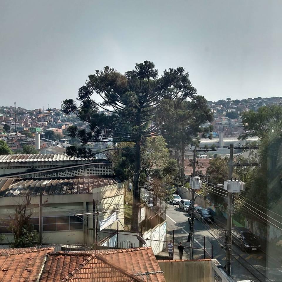 Vista do Capão Redondo a partir do prédio da Fábrica de Criatividade, onde fica uma das unidades da 4YOU2. Crédito: Rodrigo Borges Delfim/MigraMundo