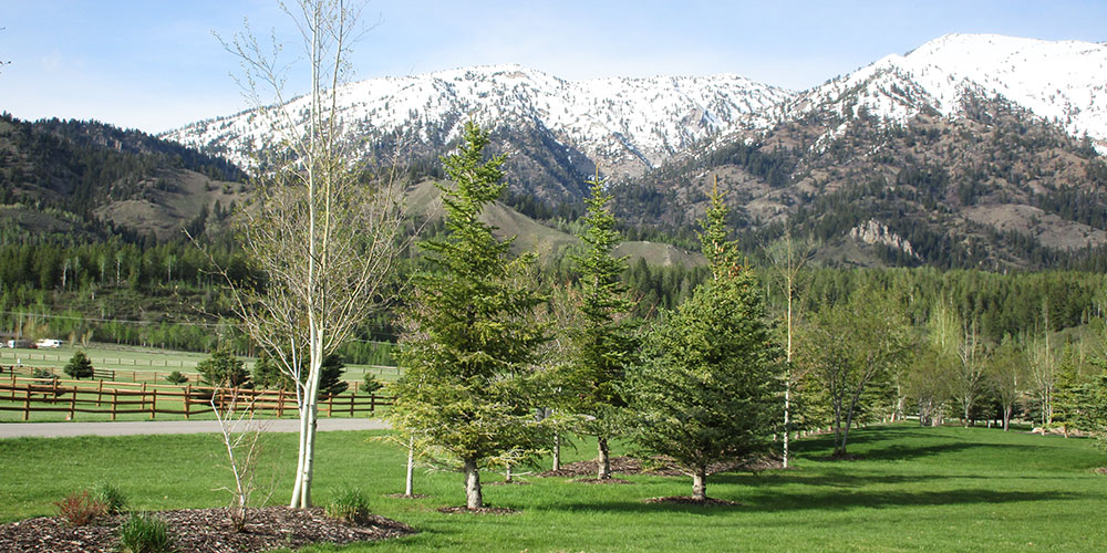 The Reserve at Alpine Airpark Lot 122