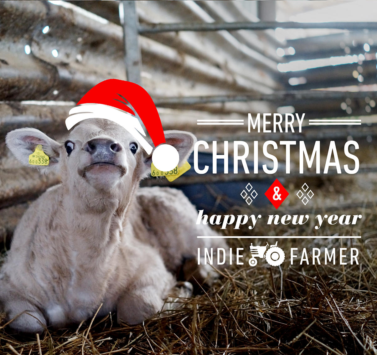 Indie Farmer Christmas Card