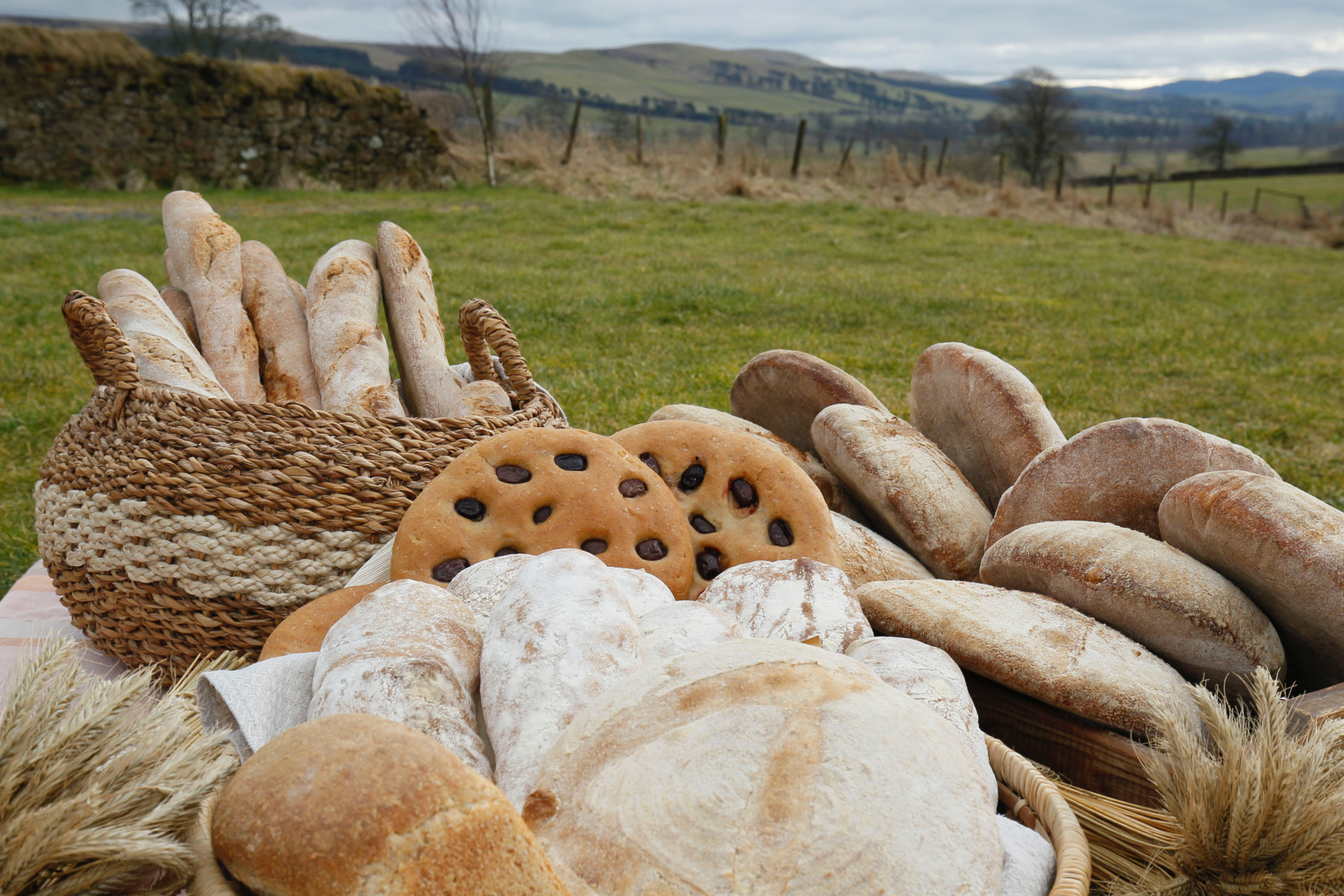 'Scotland The Bread' launches a Community Share Offer