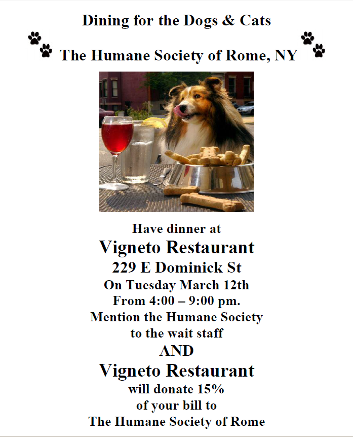 Dining for Dogs and Cats Too @ Vigneto Restaurant