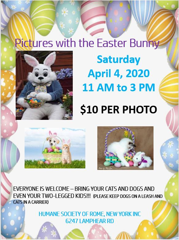 Canceled - Pictures with the Easter Bunny @ Humane Society of Rome