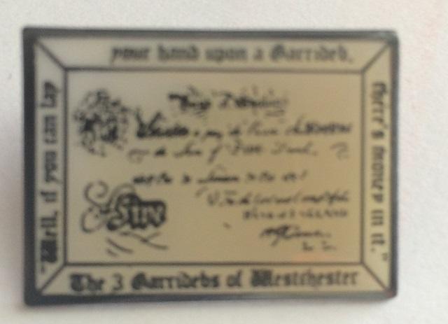 3GAR Pin