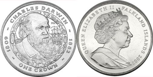 Falklands Darwin Crown