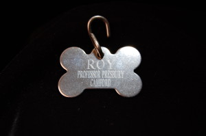 Dog tag of Roy, Presbury's faithful wolf-hound ~ WTB CREE Evidence Box