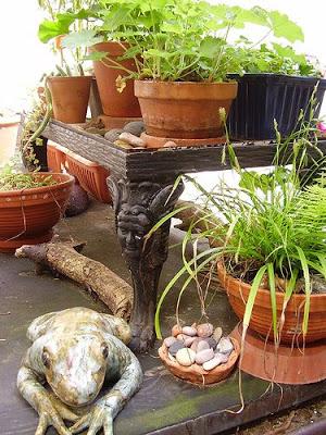 Nicola's terrace garden