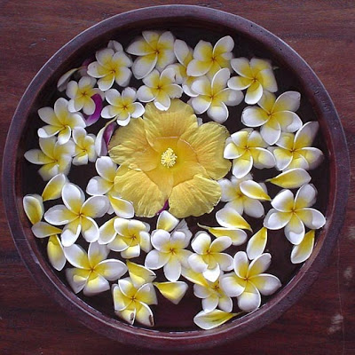 the beautiful flower bowl in bali