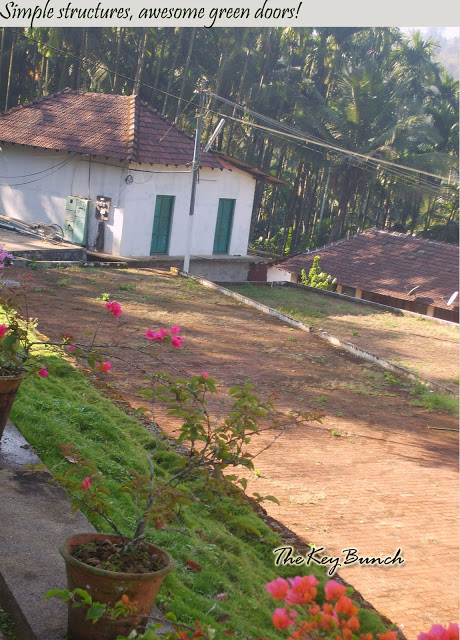 The picturesque on a coffee estate in the Western Ghats - the house, garden, pets, and the flora