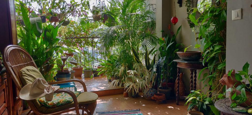 Jayashree Rajan's garden apartment tour on The Keybunch: cane chair in balcony area
