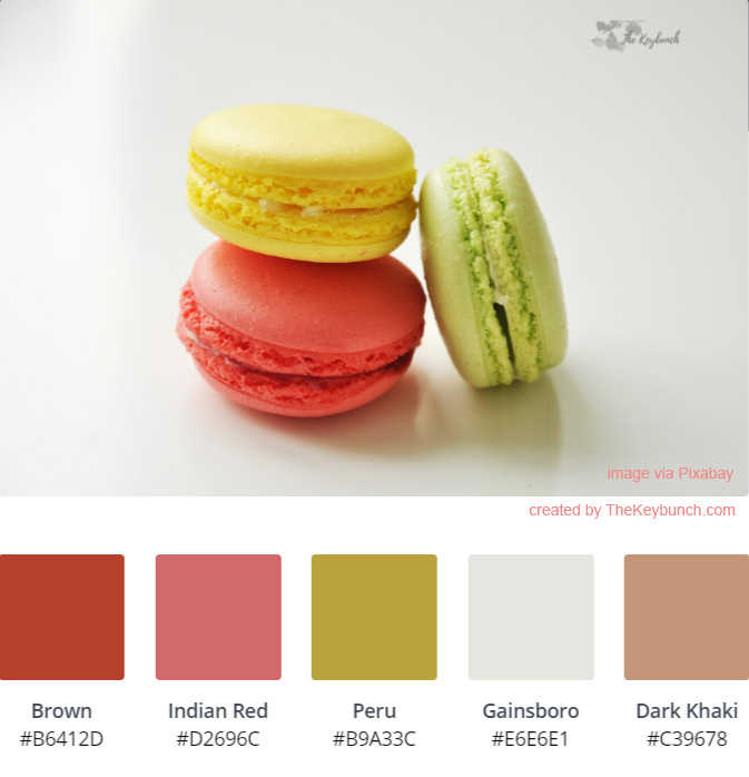 Macaroon are decorated beautifully with color palette