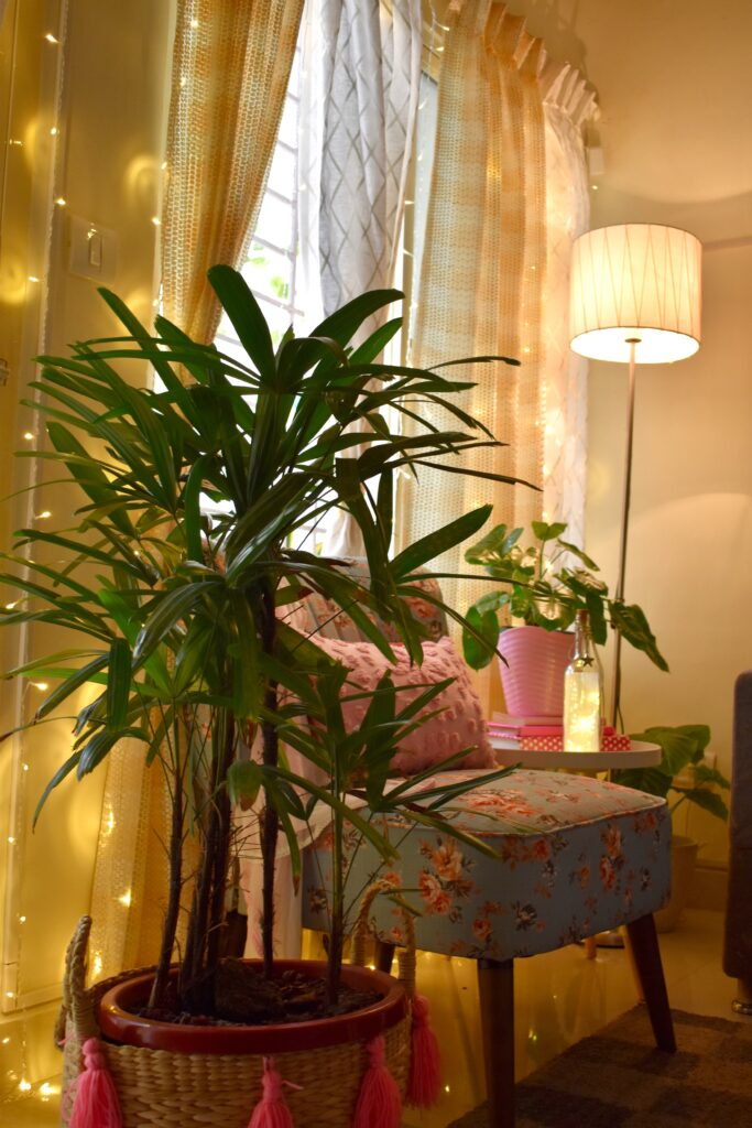 the living room corner decorated with light, gold curtain, green plants, standing lamp and chair in pink color