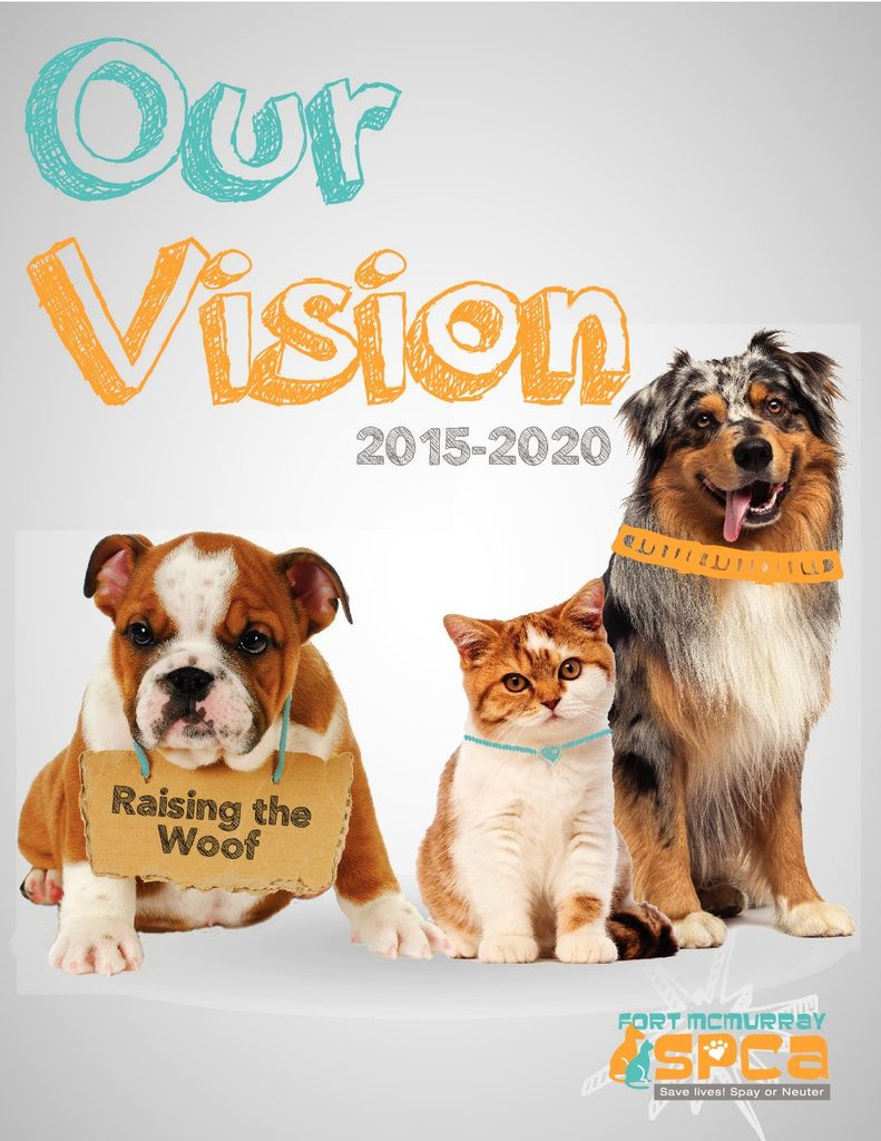Our Vision 2015-2020