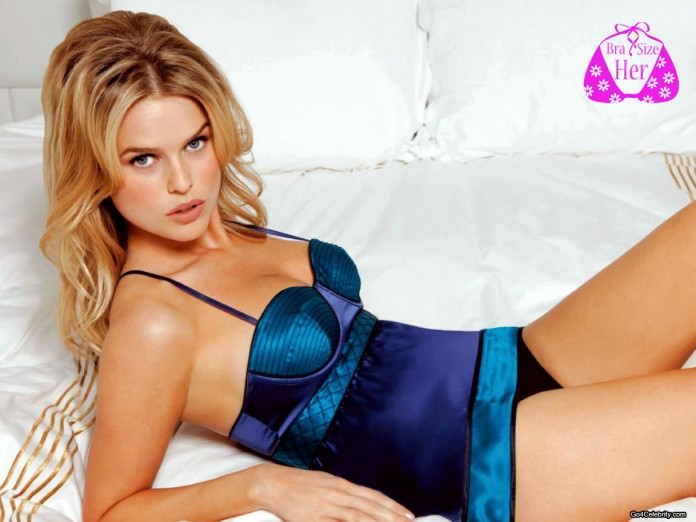 Alice Eve bra size