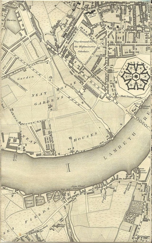 Greenwood's 1827 map showing parts of Pimlico and Millbank prior to development