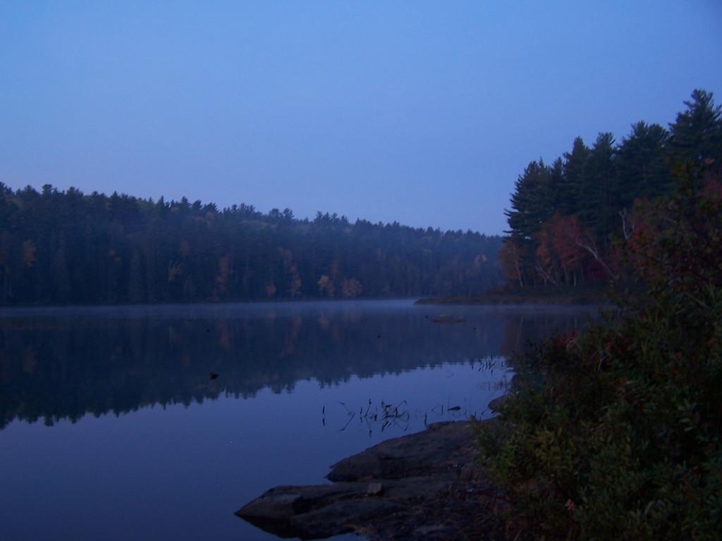 Blue Morning, Barron River