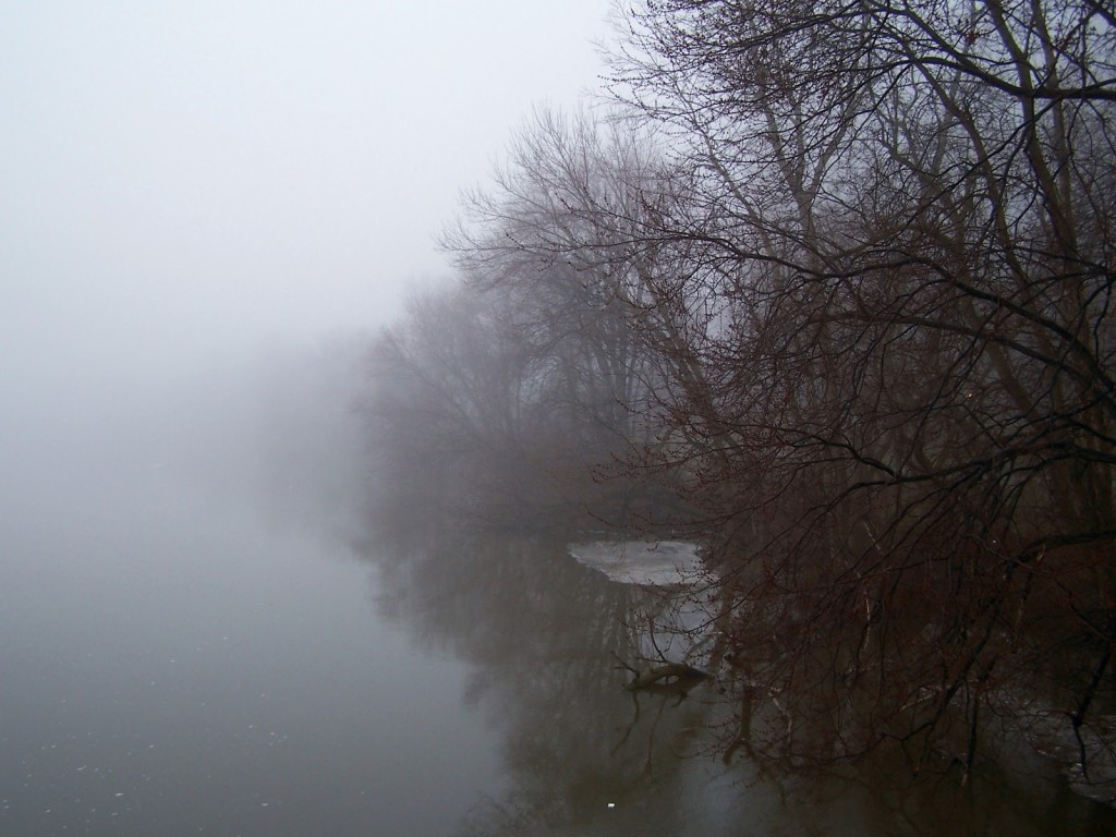 Early on a misty, Spring morning, trees recede into fog along the shoreline.