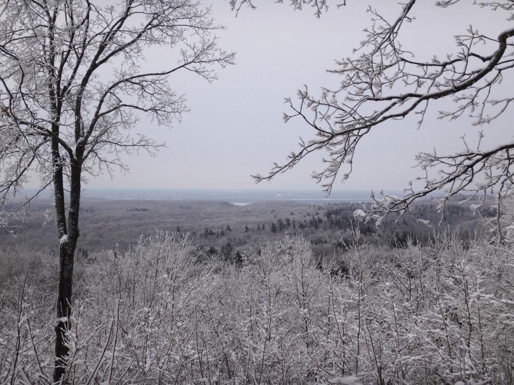 View along Trail 1