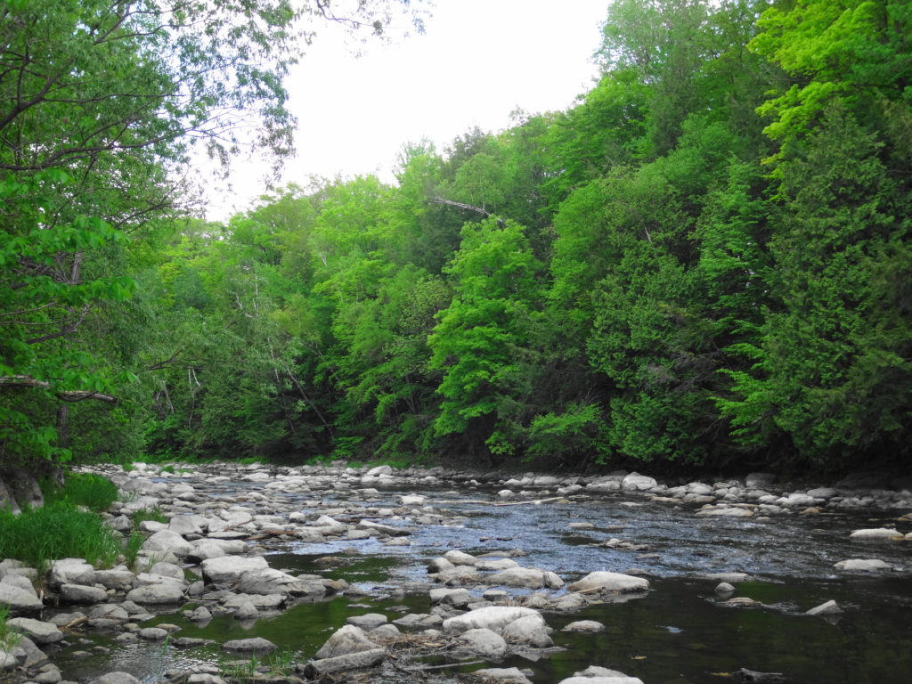 Boulders fill the bed of the Jock River, providing stepping stones to the far shore.