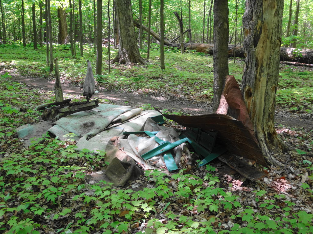 A pile of trash lies along a path in Chapman Mills East