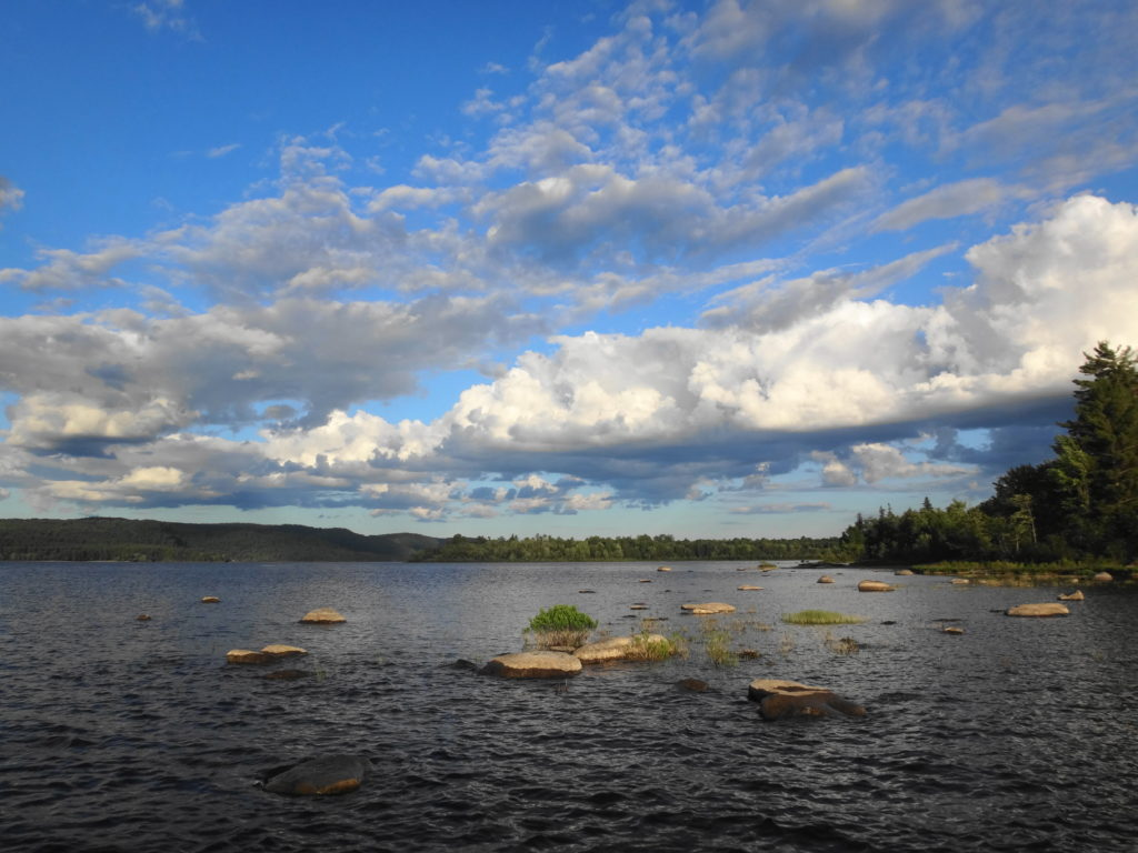 Boulders emerge from the water of the Ottawa River on sunny, summer day.