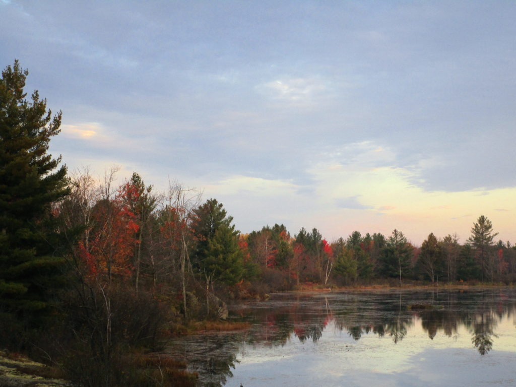Sunrise touches the autumn trees along the Lovers Pond.