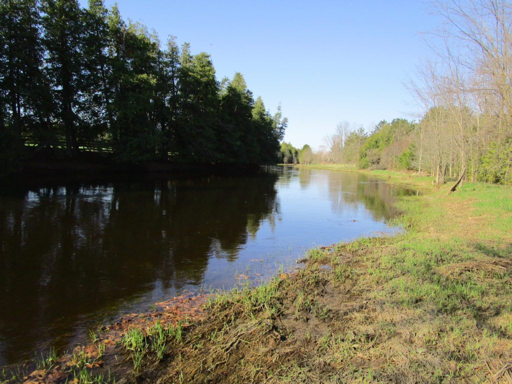 A calm river curves between a wooded shoreline and a grassy shoreline, reflecting the blue of a clear sky.;