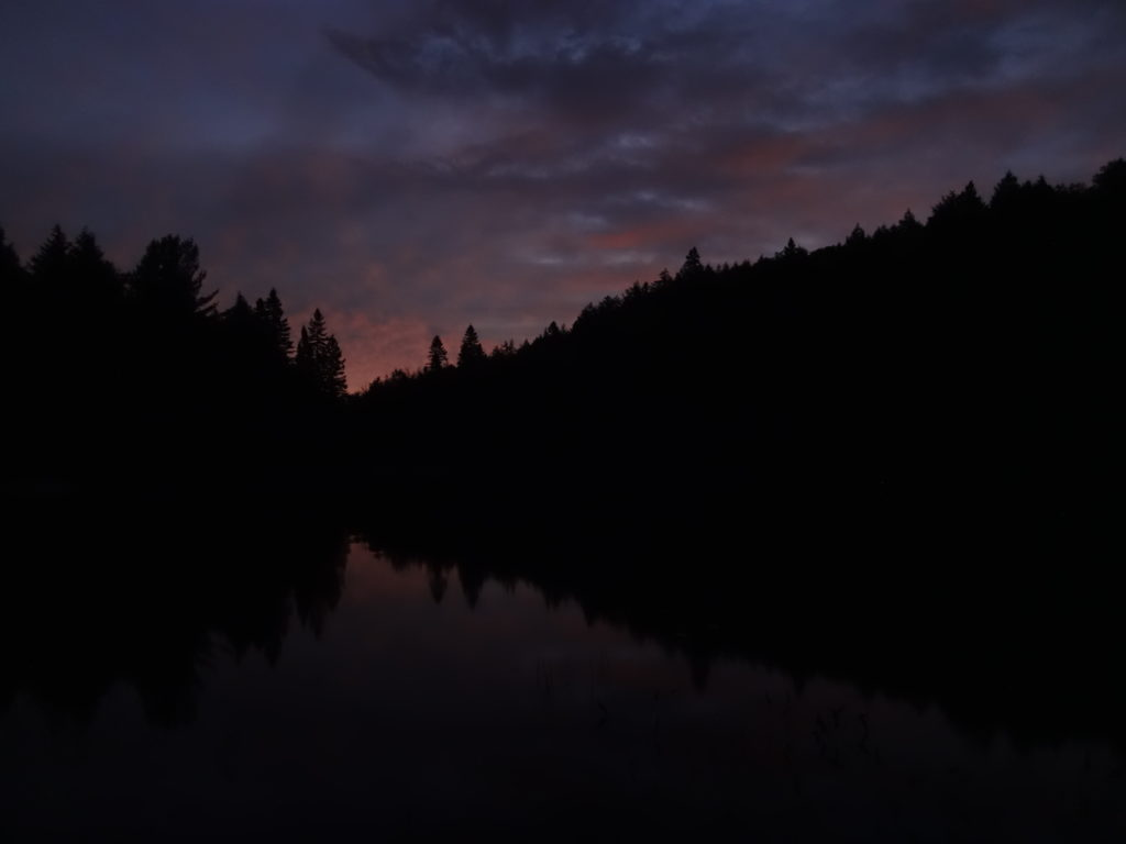 A faint peach light seeps above dark trees as dawn begins on Head Lake.