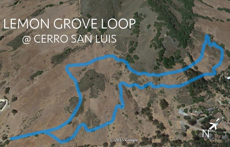 lemon grove @ cerro san luis