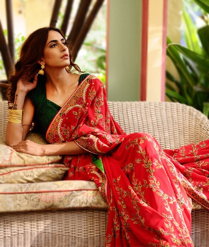 Hand-embroidered georgette saree inspired by Kashmiri Jamawar, available for members of Cabal.