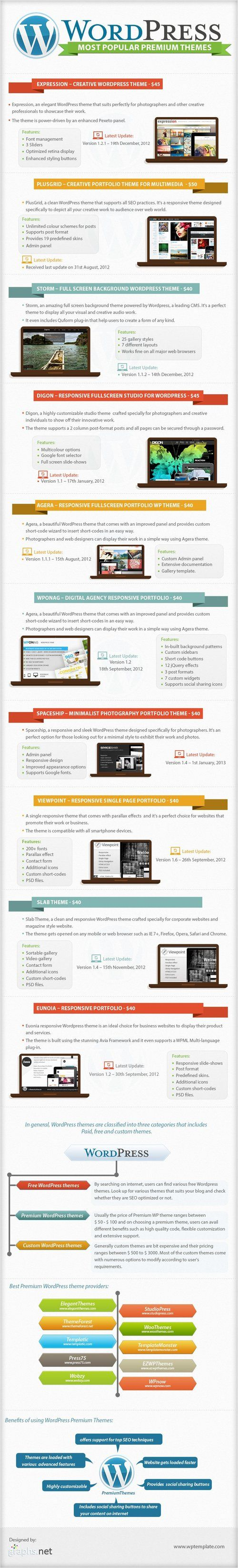 Popular WordPress Premium Themes infographic