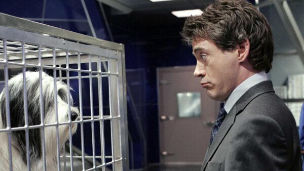 Robert Downey Jr in The Shaggy Dog
