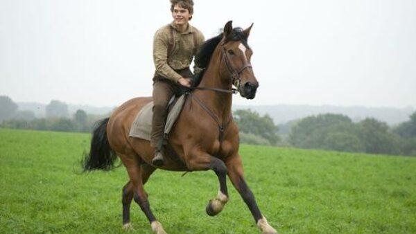 Steven Spielberg Movie War Horse 2011