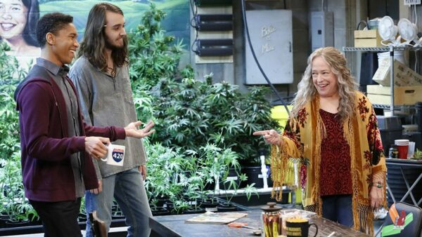 Disjointed 2017 2018