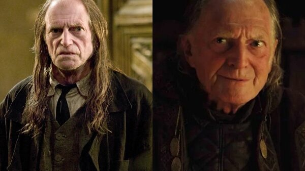 Harry Potter And Game of Thrones David Bradley