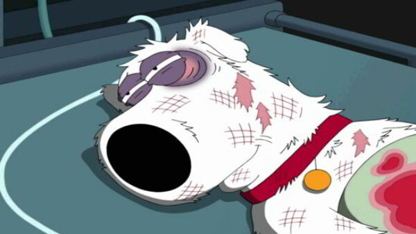 The Reason Why Brian Griffin Was Killed Off