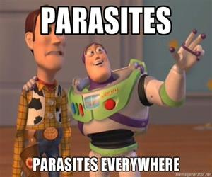 Disgusting Parasites That Infect Human Beings