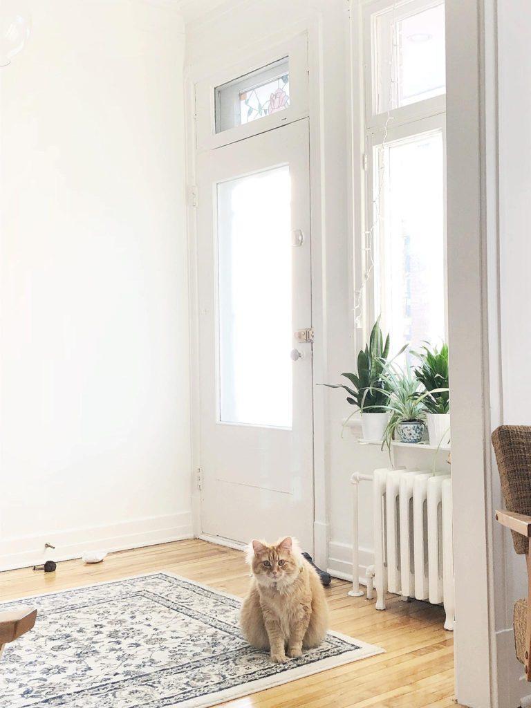 chat minimalisme décor décoration jouet chat