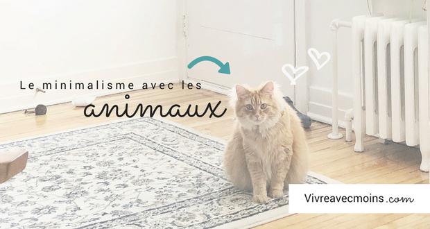 bannière article blogue animaux minimalistes