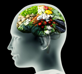 brain diet health