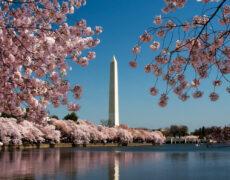 Washington Monument Reopens After Earthquake Damage